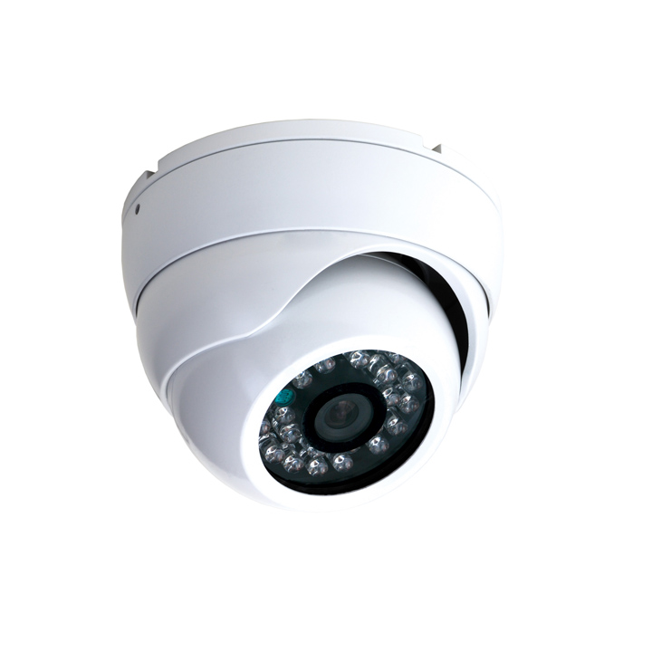 Video Surveillance Ip Security Camera FLPLDP20H130A