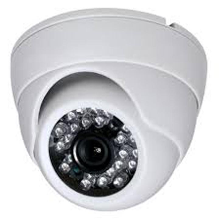 Audio Ip Camera FLPLDP20H130